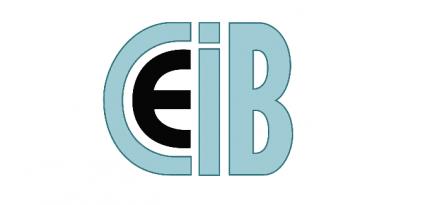 BIM Seminar der CEI-Bois